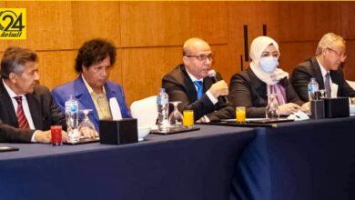 بينهم قذاف الدم.. المجلس الرئاسي: اللافي التقى في القاهرة بعدد من الشخصيات الليبية المهجرة