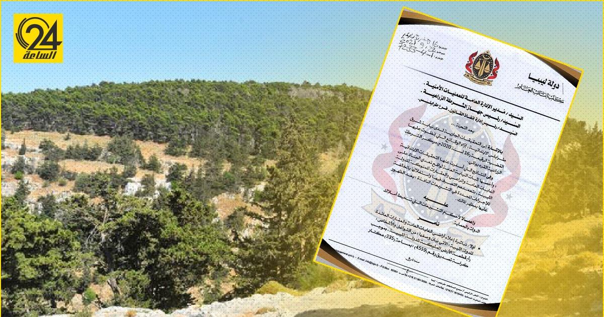 النائب العام يأمر بإخلاء 591 هكتار من أراضي الغابات المتعدي عليها من قبل المواطنين
