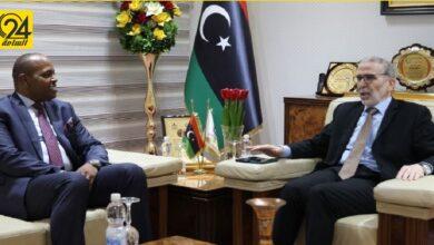 وزارة الخارجية تبحث مع «صنع الله» التعاون الدولي في المجال النفطي مع «الأوبك»